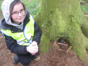 We made fairy doors from clay in class and took them to the woods!