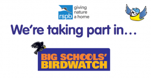 big-schools-birdwarch-2019-rspb